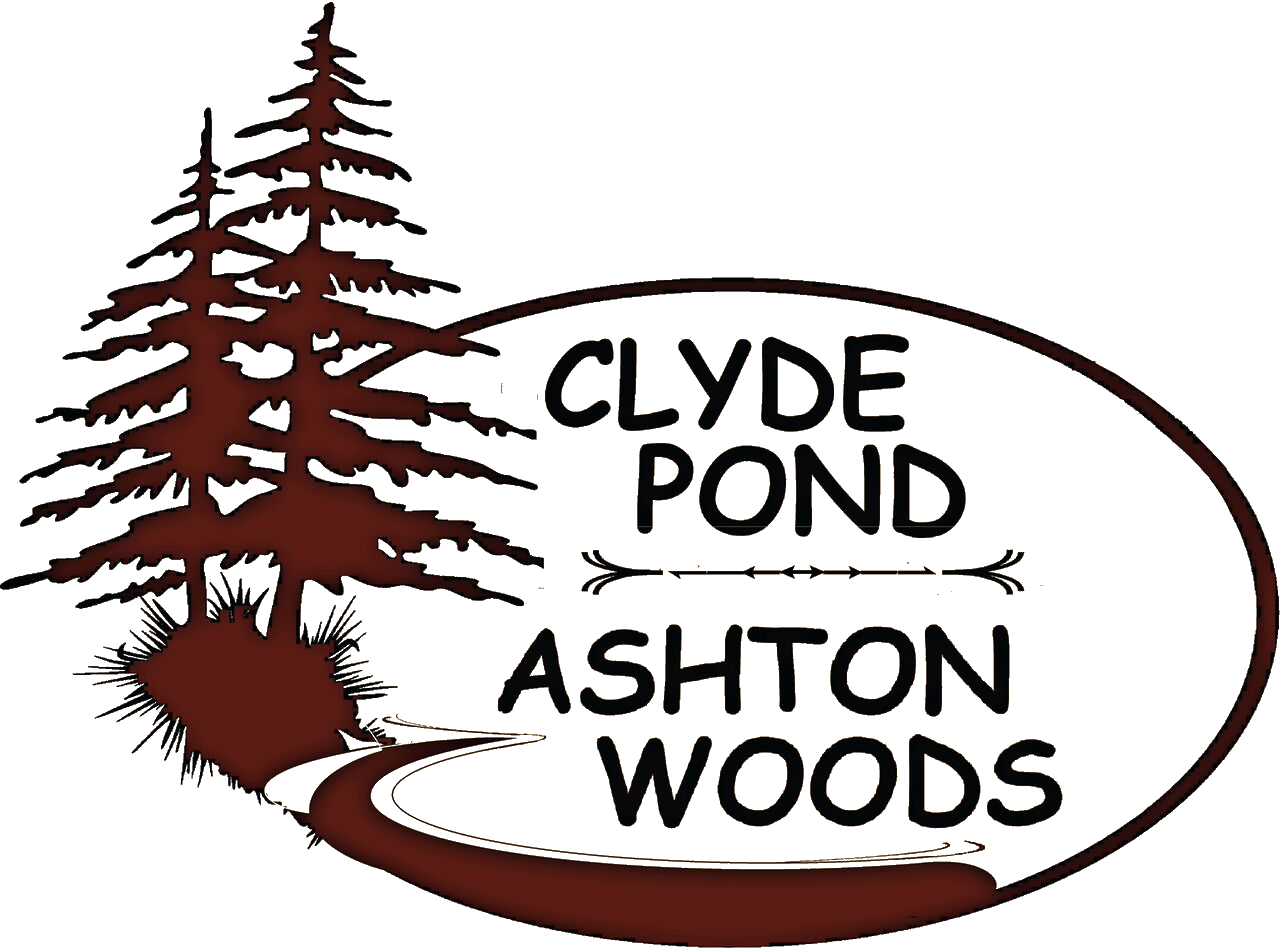 Clyde Pond